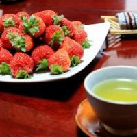 青岛草莓采摘节集合更多的优质农家服务