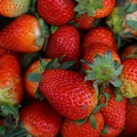 多吃草莓好处多